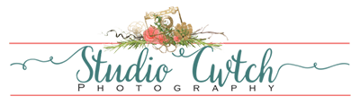 Studio Cwtch Logo